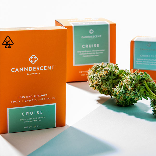 canndescent cannabis products